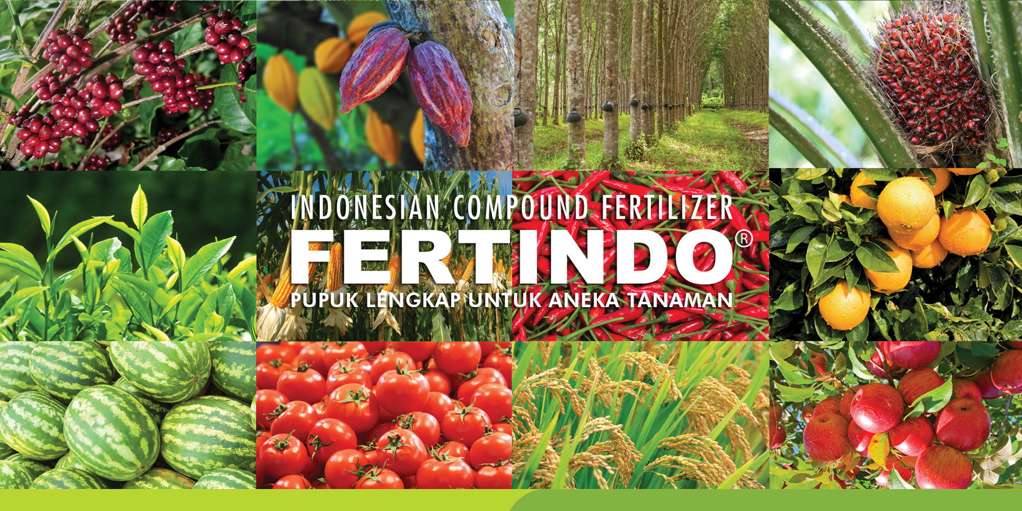 saraswanti product fertindo