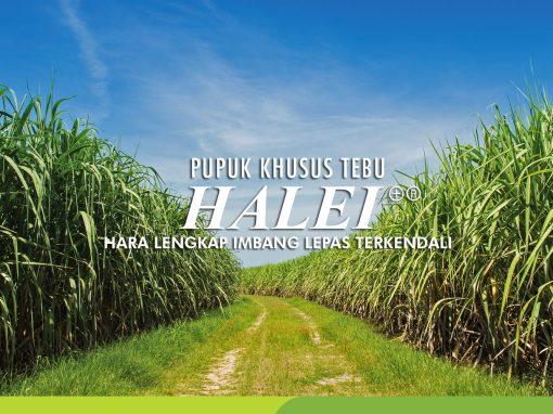 HALEI