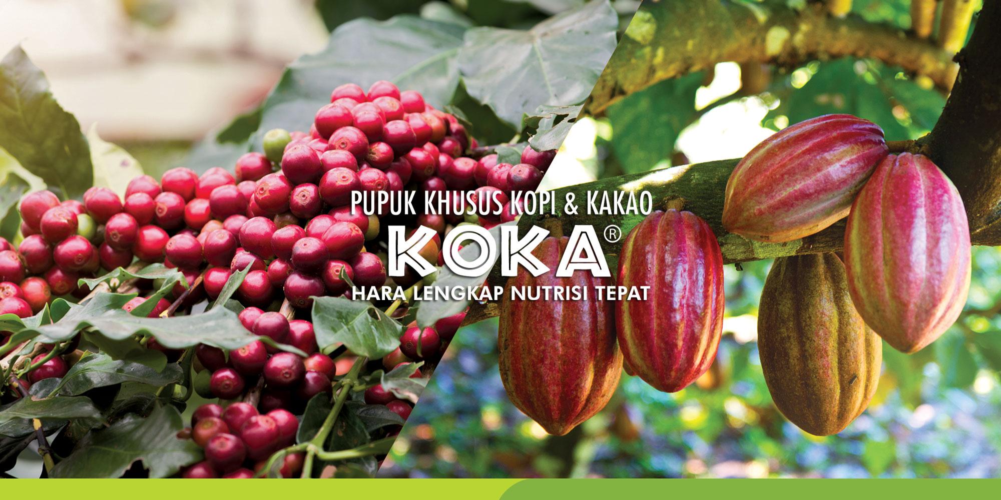 saraswanti-product---koka