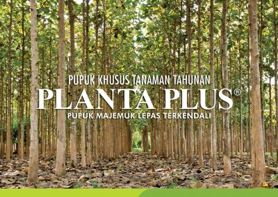 PLANTTA